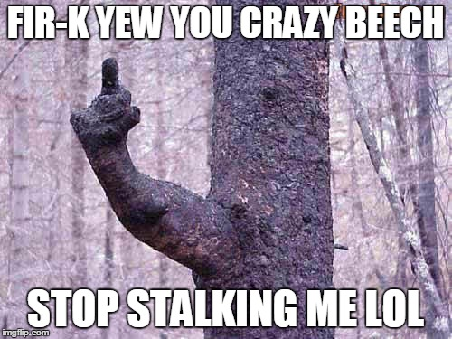 FIR-K YEW YOU CRAZY BEECH STOP STALKING ME LOL | made w/ Imgflip meme maker