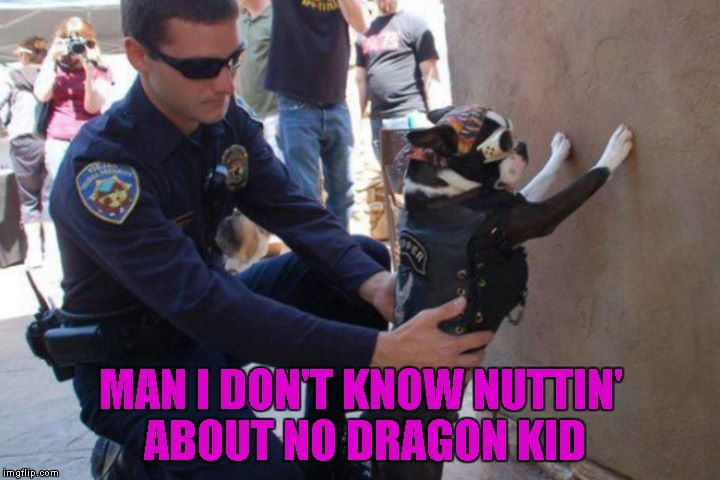 MAN I DON'T KNOW NUTTIN' ABOUT NO DRAGON KID | made w/ Imgflip meme maker
