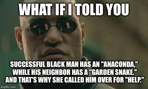"Matrix Morpheus Meme | WHAT IF I TOLD YOU SUCCESSFUL BLACK MAN HAS AN ""ANACONDA,"" WHILE HIS NEIGHBOR HAS A ""GARDEN SNAKE."" AND THAT'S WHY SHE CALLED HIM OVER FOR "" 
