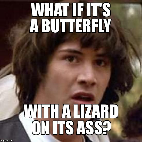 Conspiracy Keanu Meme | WHAT IF IT'S A BUTTERFLY  WITH A LIZARD ON ITS ASS? | image tagged in memes,conspiracy keanu | made w/ Imgflip meme maker