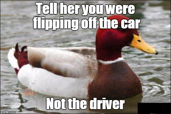 Tell her you were flipping off the car Not the driver | made w/ Imgflip meme maker