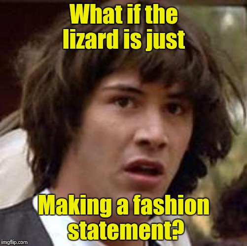 Conspiracy Keanu Meme | What if the lizard is just Making a fashion statement? | image tagged in memes,conspiracy keanu | made w/ Imgflip meme maker