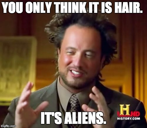 Ancient Aliens Meme | YOU ONLY THINK IT IS HAIR. IT'S ALIENS. | image tagged in memes,ancient aliens | made w/ Imgflip meme maker