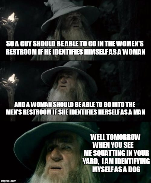 Confused Gandalf Meme | SO A GUY SHOULD BE ABLE TO GO IN THE WOMEN'S RESTROOM IF HE IDENTIFIES HIMSELF AS A WOMAN AND A WOMAN SHOULD BE ABLE TO GO INTO THE MEN'S RE | image tagged in memes,confused gandalf | made w/ Imgflip meme maker