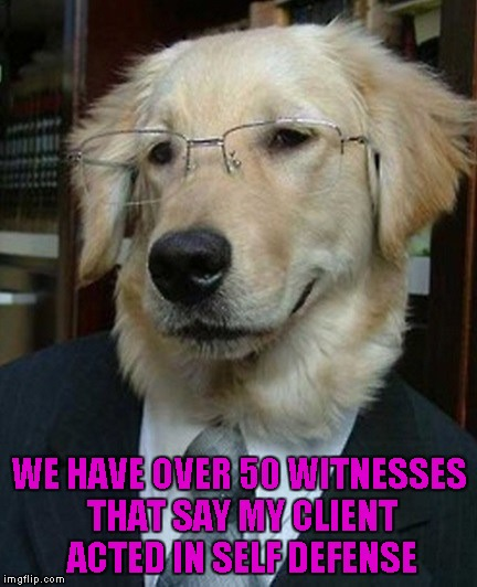 WE HAVE OVER 50 WITNESSES THAT SAY MY CLIENT ACTED IN SELF DEFENSE | made w/ Imgflip meme maker