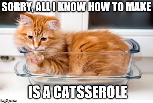 hmm, probably needs catsup.  | SORRY, ALL I KNOW HOW TO MAKE IS A CATSSEROLE | image tagged in memes,cats,animals | made w/ Imgflip meme maker