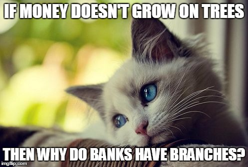 First World Problems Cat |  IF MONEY DOESN'T GROW ON TREES; THEN WHY DO BANKS HAVE BRANCHES? | image tagged in memes,first world problems cat | made w/ Imgflip meme maker