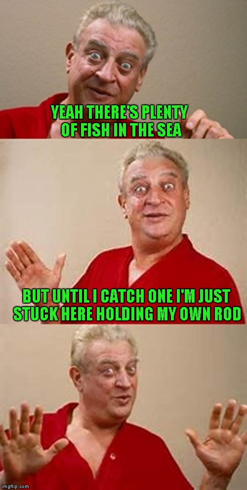 Aaahhh loneliness... | YEAH THERE'S PLENTY OF FISH IN THE SEA BUT UNTIL I CATCH ONE I'M JUST STUCK HERE HOLDING MY OWN ROD | image tagged in bad pun dangerfield,memes,funny | made w/ Imgflip meme maker