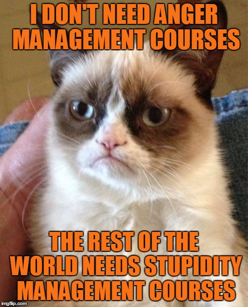 Grumpy Cat speaks the truth | I DON'T NEED ANGER MANAGEMENT COURSES THE REST OF THE WORLD NEEDS STUPIDITY MANAGEMENT COURSES | image tagged in memes,grumpy cat,anger management | made w/ Imgflip meme maker