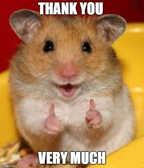 Thumbs up hamster  | THANK YOU VERY MUCH | image tagged in thumbs up hamster | made w/ Imgflip meme maker