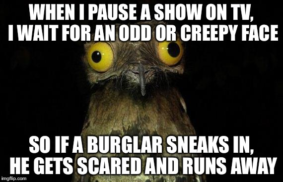 Genius! |  WHEN I PAUSE A SHOW ON TV, I WAIT FOR AN ODD OR CREEPY FACE; SO IF A BURGLAR SNEAKS IN, HE GETS SCARED AND RUNS AWAY | image tagged in memes,weird stuff i do potoo,burglar,tv,scare | made w/ Imgflip meme maker