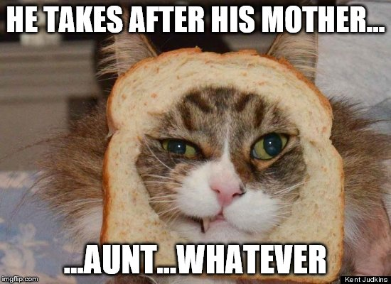 HE TAKES AFTER HIS MOTHER... ...AUNT...WHATEVER | made w/ Imgflip meme maker