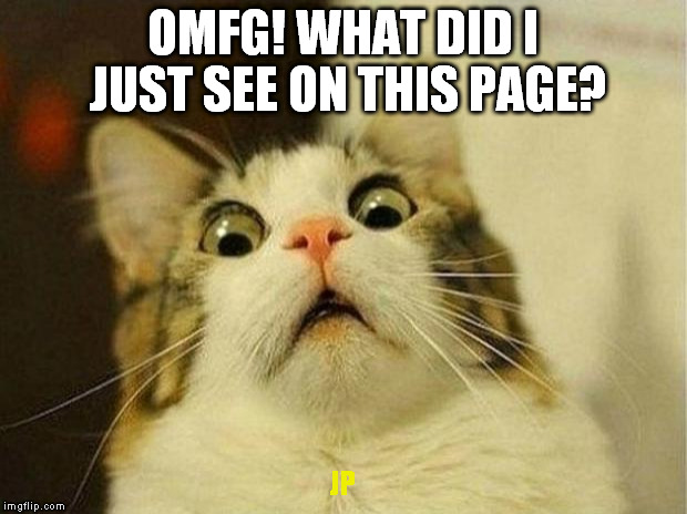 Scared Cat Meme | OMFG! WHAT DID I JUST SEE ON THIS PAGE? JP | image tagged in memes,scared cat | made w/ Imgflip meme maker