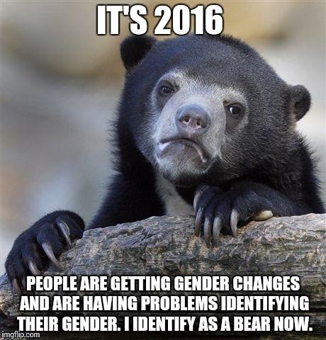 Confession Bear Meme - Imgflip