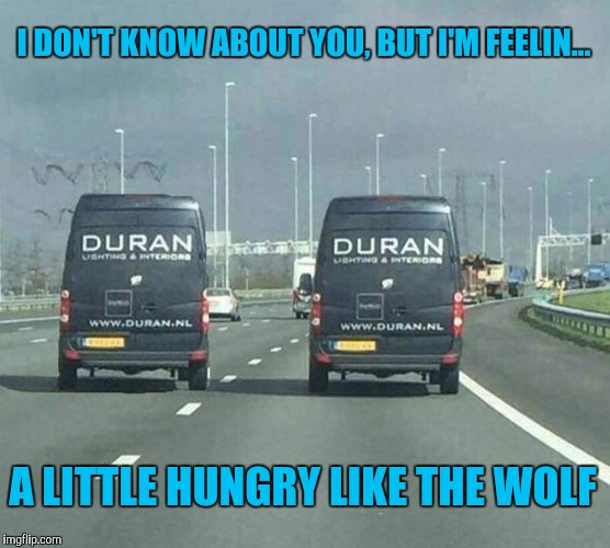 More obscure 80's reference anyone? | I DON'T KNOW ABOUT YOU, BUT I'M FEELIN... A LITTLE HUNGRY LIKE THE WOLF | image tagged in memes,funny | made w/ Imgflip meme maker