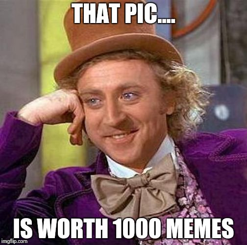 Creepy Condescending Wonka Meme | THAT PIC.... IS WORTH 1000 MEMES | image tagged in memes,creepy condescending wonka | made w/ Imgflip meme maker