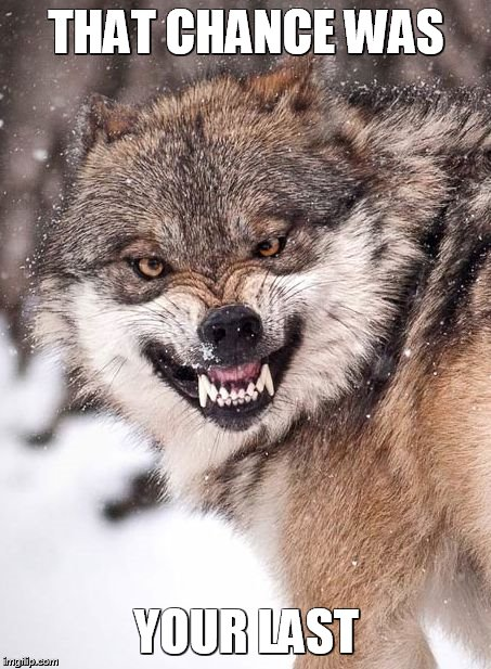 Angry Wolf | THAT CHANCE WAS YOUR LAST | image tagged in angry wolf | made w/ Imgflip meme maker