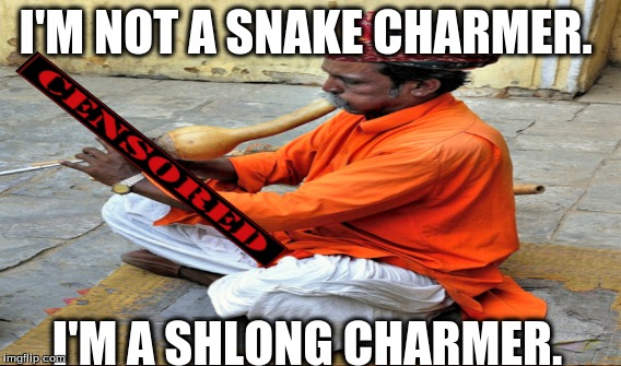 Long Shlong | I'M NOT A SNAKE CHARMER. I'M A SHLONG CHARMER. | image tagged in nosebleed,expand dong,snake,spear,smooth waves,horny | made w/ Imgflip meme maker
