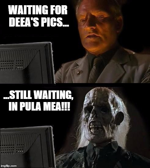 Still Waiting | WAITING FOR DEEA'S PICS... ...STILL WAITING, IN PULA MEA!!! | image tagged in still waiting | made w/ Imgflip meme maker
