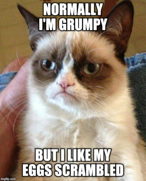 Grumpy Cat Meme | NORMALLY I'M GRUMPY BUT I LIKE MY EGGS SCRAMBLED | image tagged in memes,grumpy cat | made w/ Imgflip meme maker