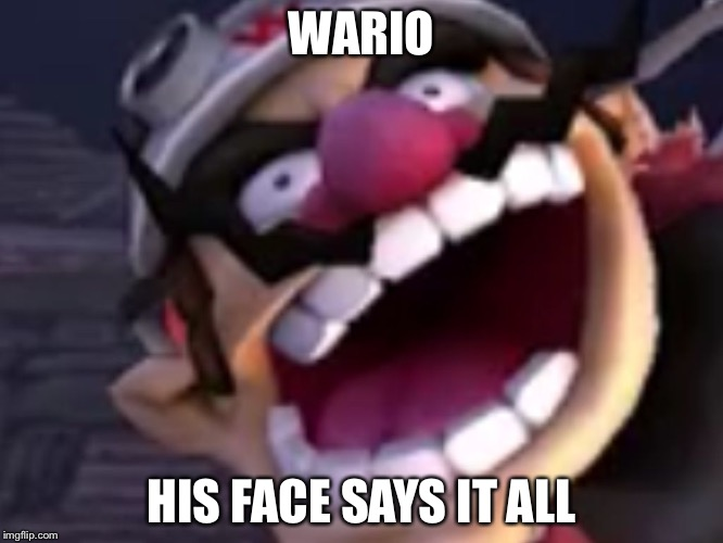 Wario |  WARIO; HIS FACE SAYS IT ALL | image tagged in wario | made w/ Imgflip meme maker