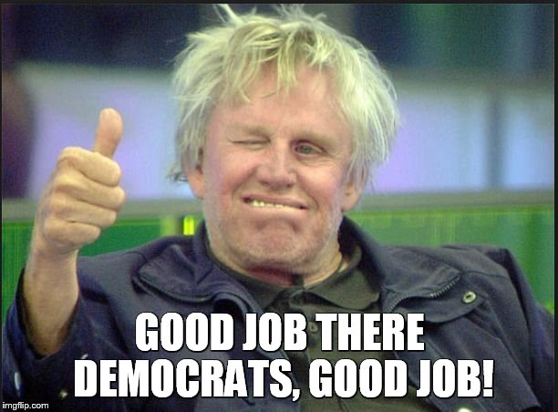 gary | GOOD JOB THERE DEMOCRATS, GOOD JOB! | image tagged in gary | made w/ Imgflip meme maker