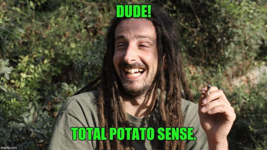 DUDE! TOTAL POTATO SENSE. | made w/ Imgflip meme maker