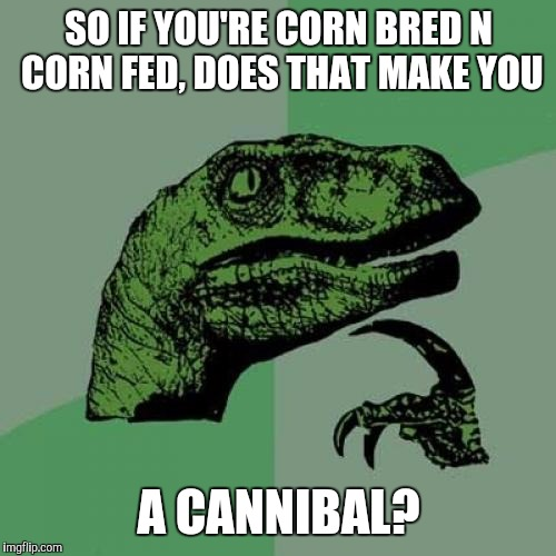 Philosoraptor Meme | SO IF YOU'RE CORN BRED N CORN FED, DOES THAT MAKE YOU A CANNIBAL? | image tagged in memes,philosoraptor | made w/ Imgflip meme maker