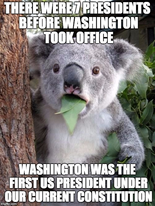 WTF Koala | THERE WERE 7 PRESIDENTS BEFORE WASHINGTON TOOK OFFICE WASHINGTON WAS THE FIRST US PRESIDENT UNDER OUR CURRENT CONSTITUTION | image tagged in wtf koala | made w/ Imgflip meme maker