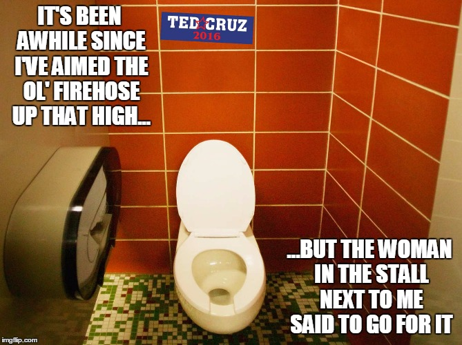 it gets me more points than nailing a Trump sticker | IT'S BEEN AWHILE SINCE I'VE AIMED THE OL' FIREHOSE UP THAT HIGH... ...BUT THE WOMAN IN THE STALL NEXT TO ME SAID TO GO FOR IT | image tagged in election 2016,politics,cruz,gender identity | made w/ Imgflip meme maker