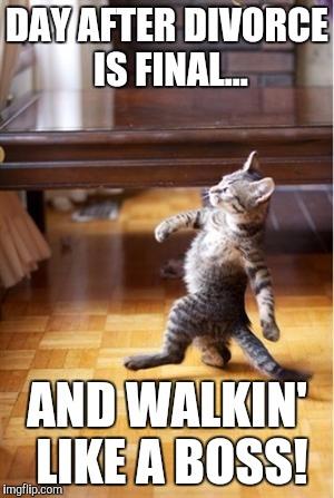 Walking Cat Meme Generator - Imgflip