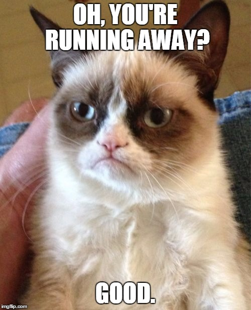 Grumpy Cat Meme | OH, YOU'RE RUNNING AWAY? GOOD. | image tagged in memes,grumpy cat | made w/ Imgflip meme maker