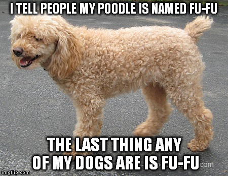 To this day FUFU berry is still a high volume Jones soda beverage flavor |  I TELL PEOPLE MY POODLE IS NAMED FU-FU; THE LAST THING ANY OF MY DOGS ARE IS FU-FU | image tagged in memes,funny | made w/ Imgflip meme maker