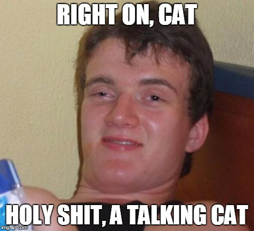 10 Guy Meme | RIGHT ON, CAT HOLY SHIT, A TALKING CAT | image tagged in memes,10 guy | made w/ Imgflip meme maker