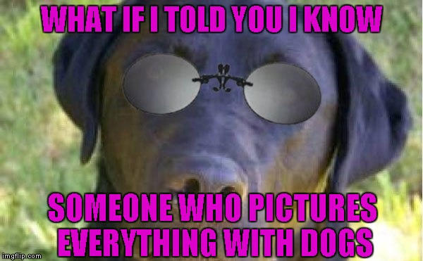 WHAT IF I TOLD YOU I KNOW SOMEONE WHO PICTURES EVERYTHING WITH DOGS | made w/ Imgflip meme maker