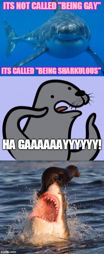 "ITS NOT CALLED ""BEING GAY"" ITS CALLED ""BEING SHARKULOUS"" HA GAAAAAAYYYYYY! 
