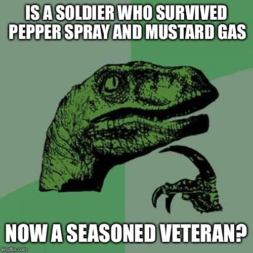 Philosoraptor Meme | IS A SOLDIER WHO SURVIVED PEPPER SPRAY AND MUSTARD GAS NOW A SEASONED VETERAN? | image tagged in memes,philosoraptor | made w/ Imgflip meme maker