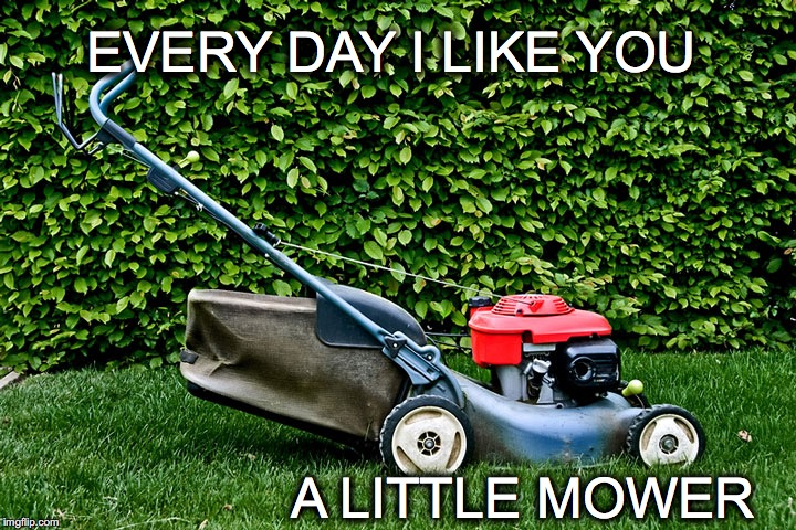 Idle Saturday Thoughts | EVERY DAY I LIKE YOU A LITTLE MOWER | image tagged in janey mack flirt,mower,lawn mower meme,funny,like you a little mower | made w/ Imgflip meme maker