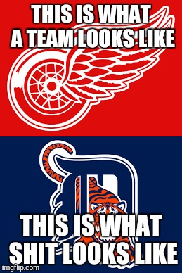 Last year people used injuries as the excuse, the wings deal with injuries but draft talent and still make the playoffs.  |  THIS IS WHAT A TEAM LOOKS LIKE; THIS IS WHAT SHIT LOOKS LIKE | image tagged in detroit tigers,detroit red wings,nhl,playoffs,mlb | made w/ Imgflip meme maker
