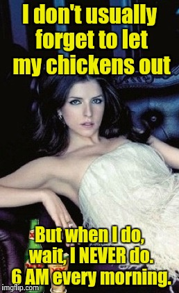Most interesting Anna in the world | I don't usually forget to let my chickens out But when I do, wait, I NEVER do. 6 AM every morning. | image tagged in most interesting anna in the world | made w/ Imgflip meme maker