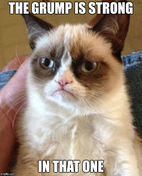 Grumpy Cat Meme | THE GRUMP IS STRONG IN THAT ONE | image tagged in memes,grumpy cat | made w/ Imgflip meme maker
