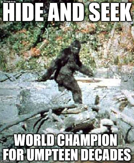Bigfoot |  HIDE AND SEEK; WORLD CHAMPION FOR UMPTEEN DECADES | image tagged in bigfoot | made w/ Imgflip meme maker