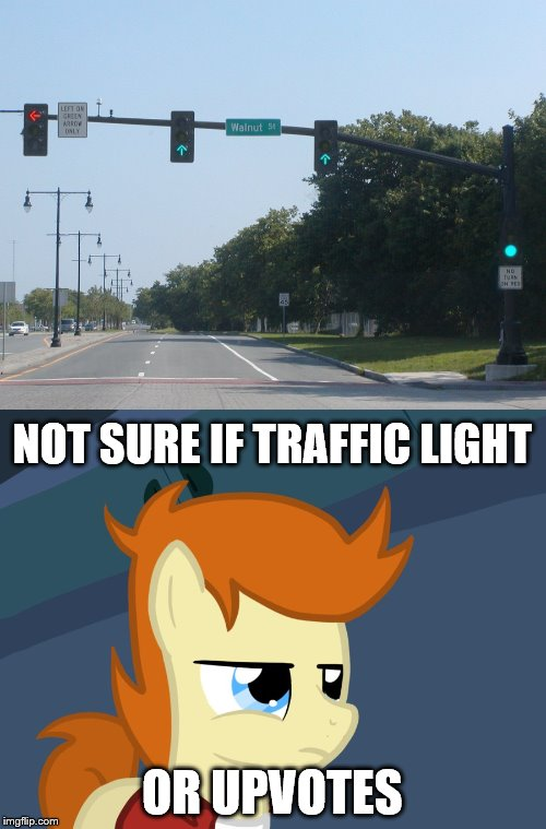 NOT SURE IF TRAFFIC LIGHT OR UPVOTES | made w/ Imgflip meme maker