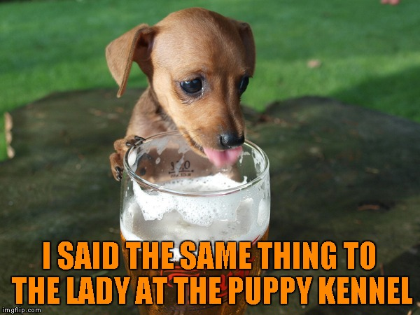 I SAID THE SAME THING TO THE LADY AT THE PUPPY KENNEL | made w/ Imgflip meme maker