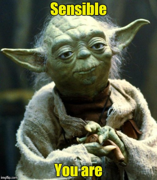 Star Wars Yoda Meme | Sensible You are | image tagged in memes,star wars yoda | made w/ Imgflip meme maker