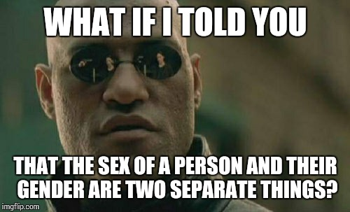 Matrix Morpheus Meme | WHAT IF I TOLD YOU THAT THE SEX OF A PERSON AND THEIR GENDER ARE TWO SEPARATE THINGS? | image tagged in memes,matrix morpheus | made w/ Imgflip meme maker