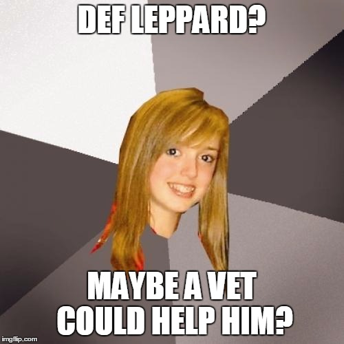 DEF LEPPARD? MAYBE A VET COULD HELP HIM? | made w/ Imgflip meme maker