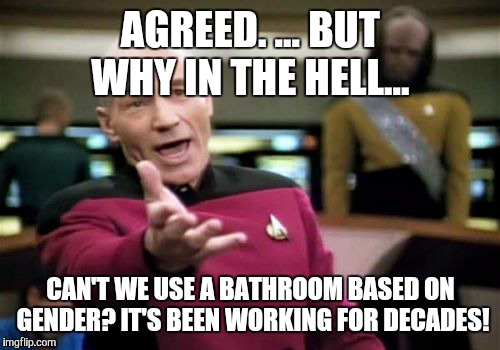 Picard Wtf Meme | AGREED. ... BUT WHY IN THE HELL... CAN'T WE USE A BATHROOM BASED ON GENDER? IT'S BEEN WORKING FOR DECADES! | image tagged in memes,picard wtf | made w/ Imgflip meme maker