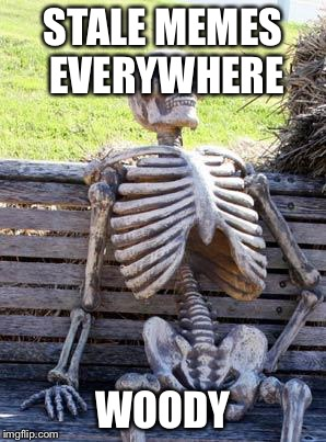 Waiting Skeleton Meme | STALE MEMES EVERYWHERE WOODY | image tagged in memes,waiting skeleton | made w/ Imgflip meme maker