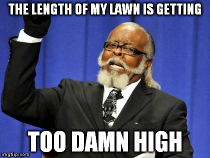 Too Damn High | THE LENGTH OF MY LAWN IS GETTING TOO DAMN HIGH | image tagged in memes,too damn high,lawn,cutting,lawnmower | made w/ Imgflip meme maker